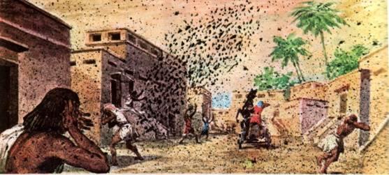 4 Наказание пёсьими мухами